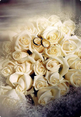 love roses from 1 million love messages.jpg